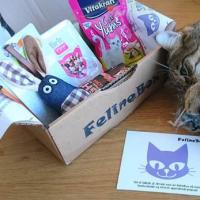 Felinebox